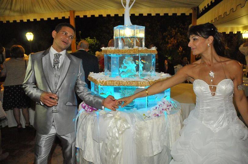 Matrimonio Acquario Romano : Magic reef
