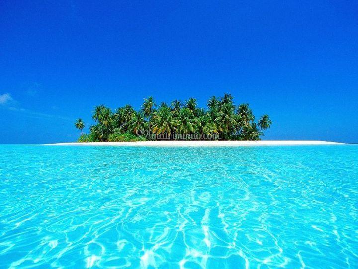 Atollo di Ari - Maldive