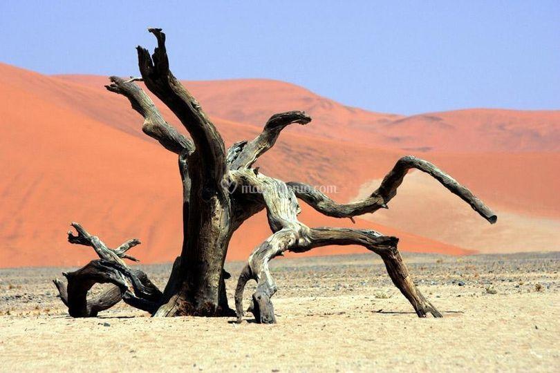 Namibia: Deserto rosso