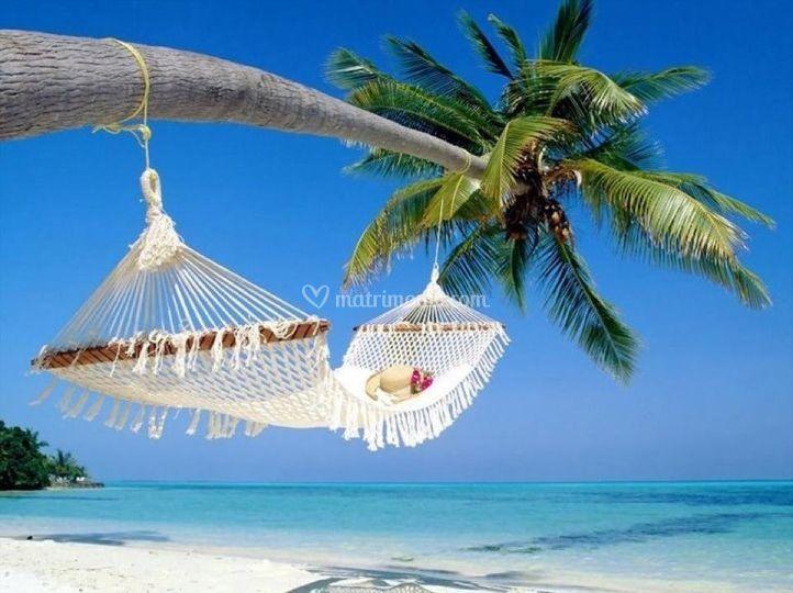 Barbados (Caraibi):  Spiaggia