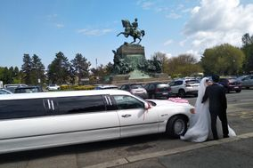 Limousine Feste in Torino