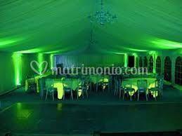 Green sala