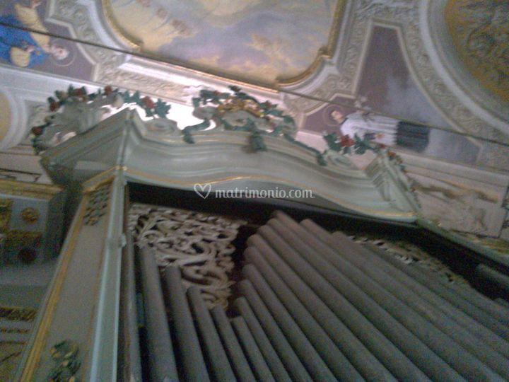 Organo ligure