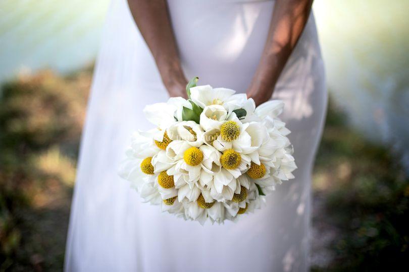 Matrimonio Montecosaro