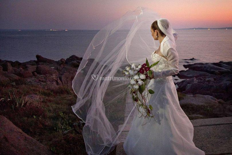 Elisabetta Messina Fotografa