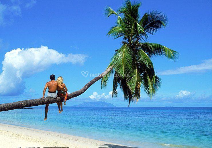 Mari tropicali