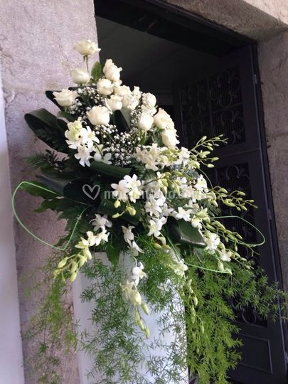 Particolare fiori