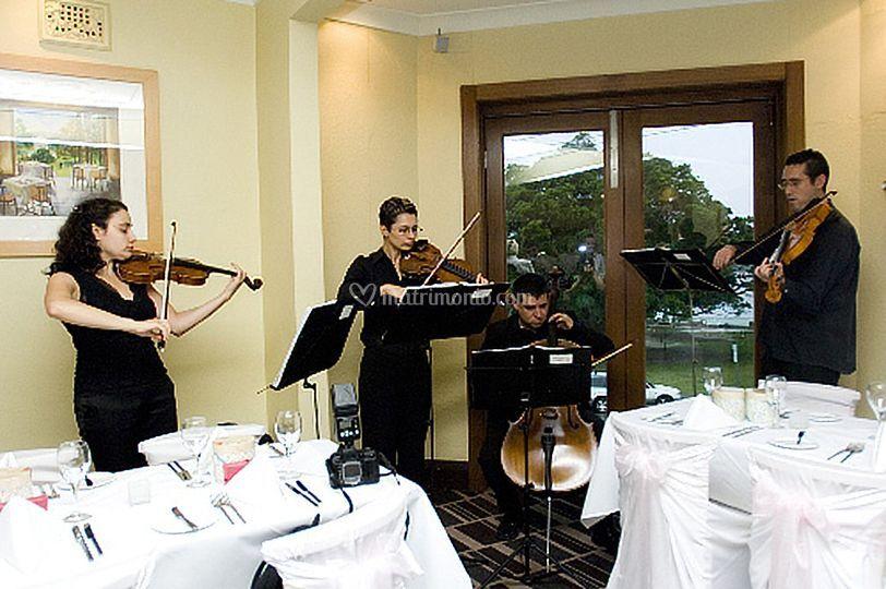 Musica matrimonio Acqui Terme