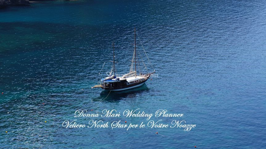 Wedding on Board