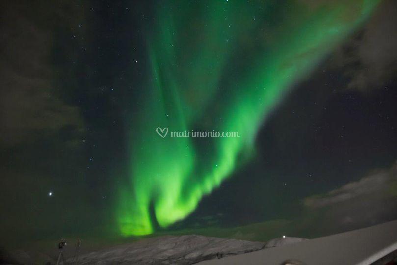 Gruppo  Aurora Boreale