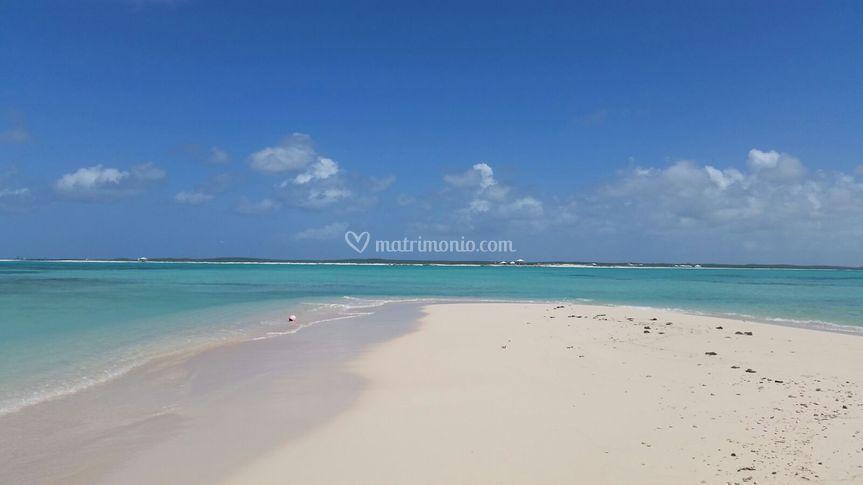 Cercavacanze alle Bahamas