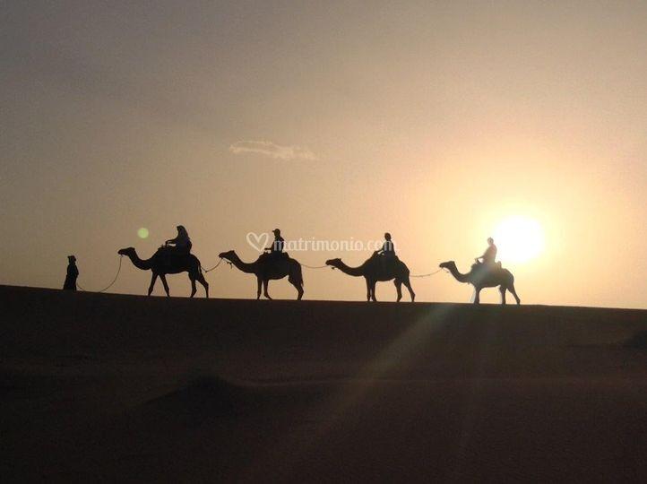 Gruppo Cercavacanze Marocco