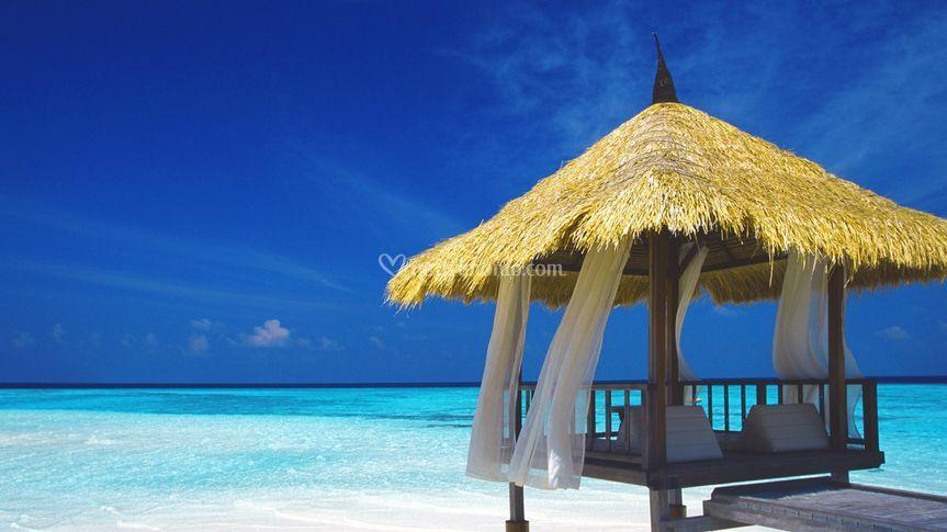 Exclusive Resort - Maldive