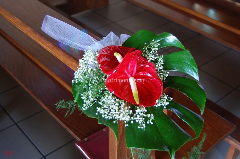 I fiori della cascina for Anthurium rosso