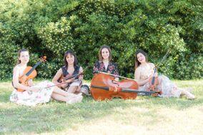 Blumen Quartet