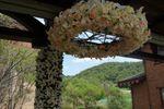 Lampadari in fiori di Marco Segantin