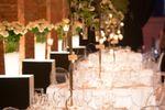 Mazzi di rose luminose di Marco Segantin