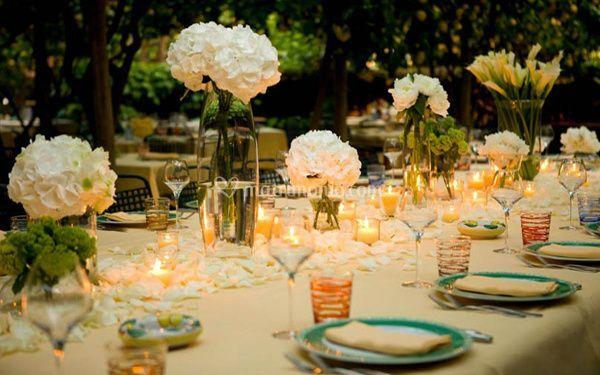 Allestimento giardino di paolino capri foto for Decorazione giardino matrimonio