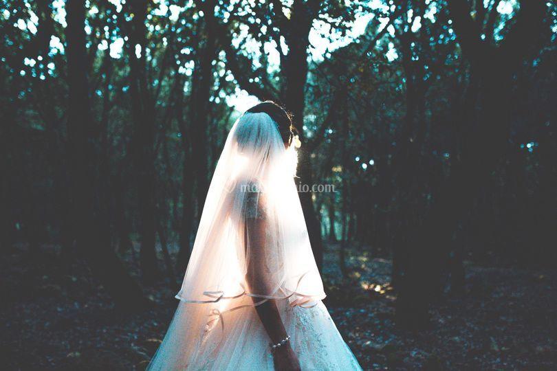 Sposa al bosco