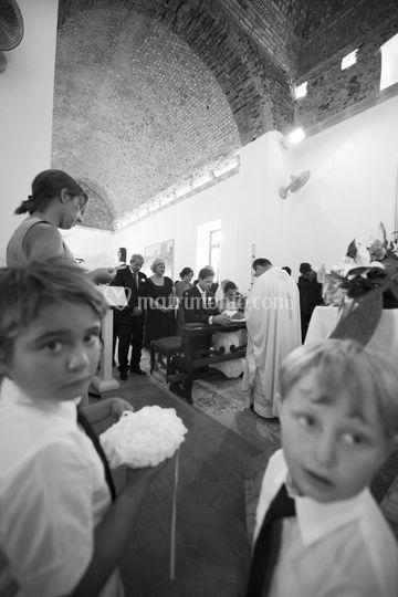 © domenico stallone
