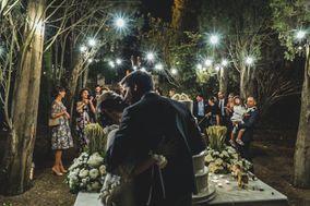 Tears Wedding Film