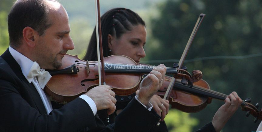 I violini