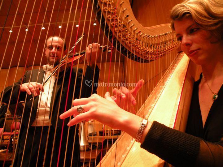 Violino e Arpa