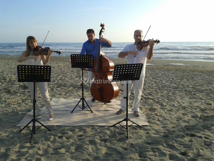 Un matrimonio sulla spiaggia.