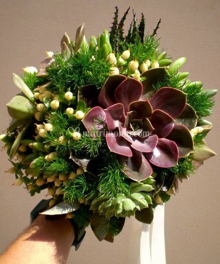 Bouquet piante grasse.