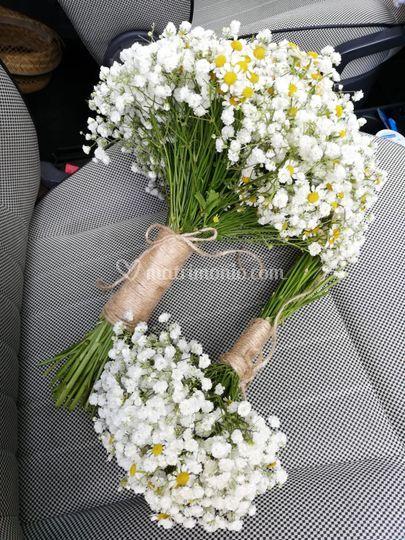 Bouquet gypsophila e camomilla