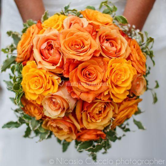 Bouquet del sole