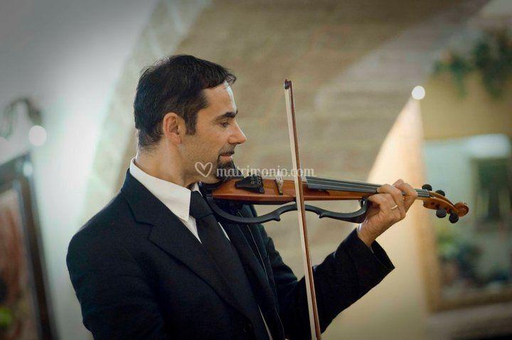 Vito Parisi, Violinista
