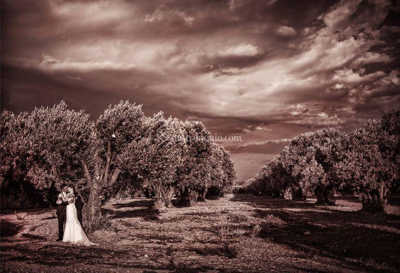 Sposi & natura