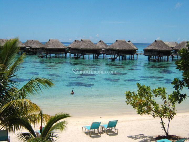Polinesia, Morea