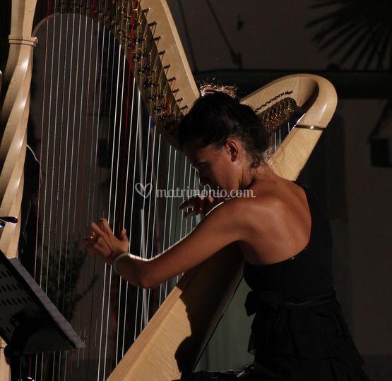 Ester Pavlic, arpista