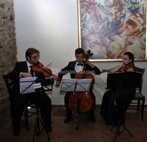 11/11/2014 - Cosenza