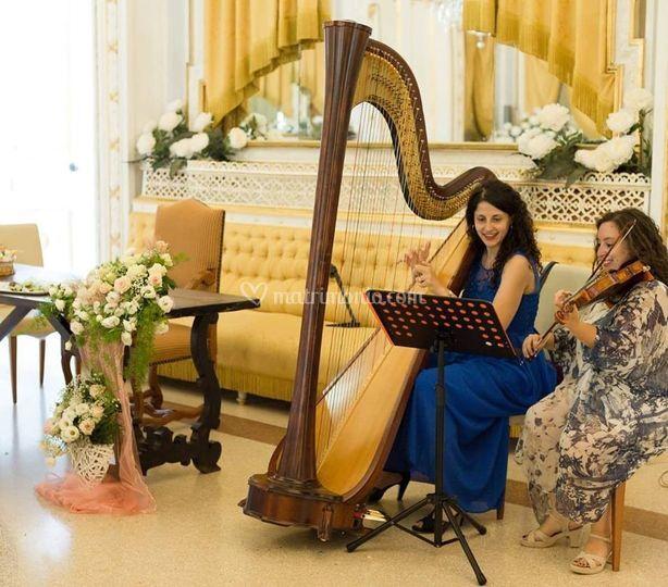 Violinista - Beatrice Limonti
