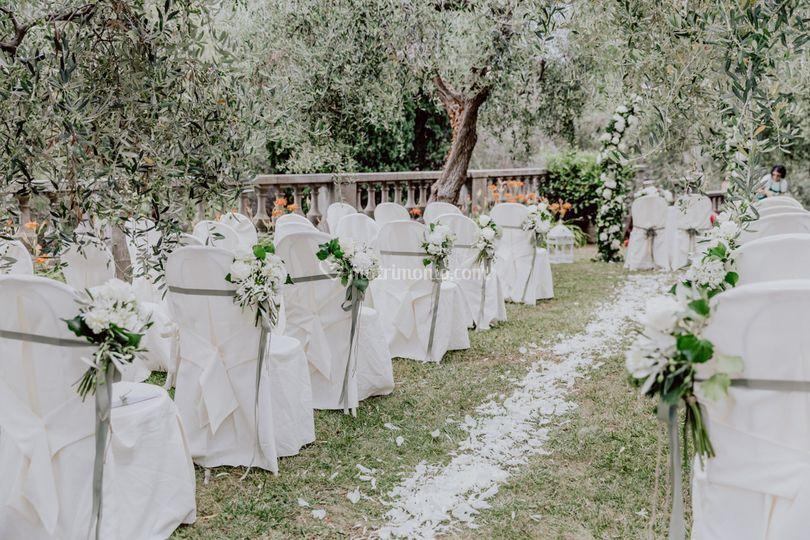 Cerimonia sotto gli ulivi