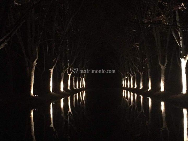 Laghetto illuminato di sera