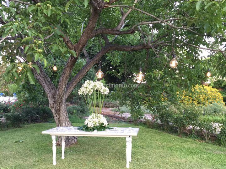 Allestimento albero