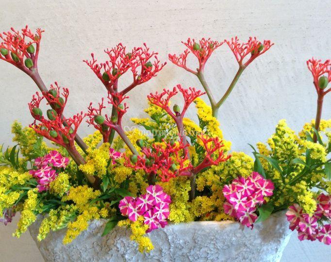 Eriko Flower Design