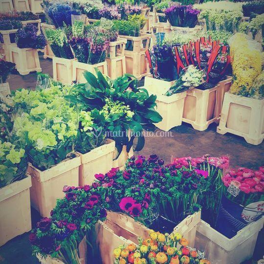 Attenta selezione dei fiori