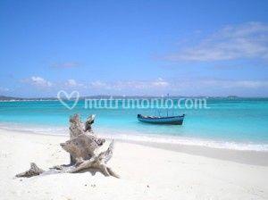 Idea viaggio. Madagascar