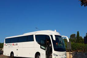 Punto Bus Service