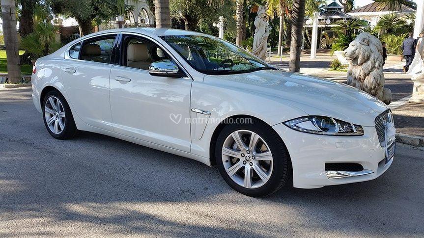 Jaguar xf bianco