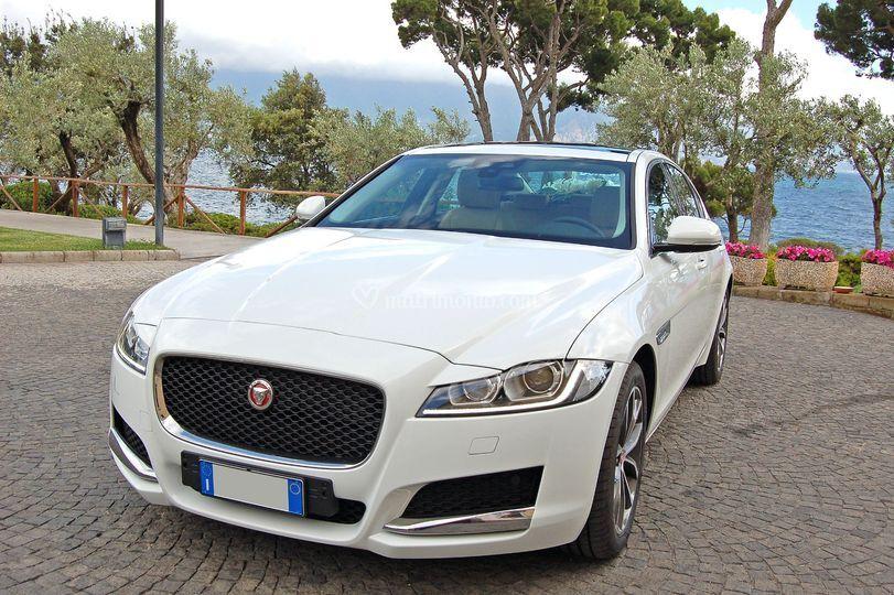 Jaguar xf bianco nuova serie