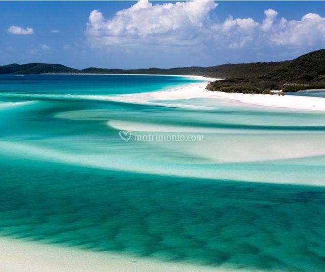 Isola di Whitsunday- Australia