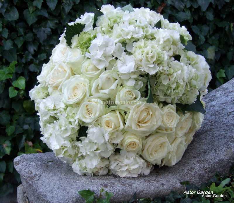 Fiori Bianchi 3.Sfera Fiori Bianchi Di Astor Garden Foto 3