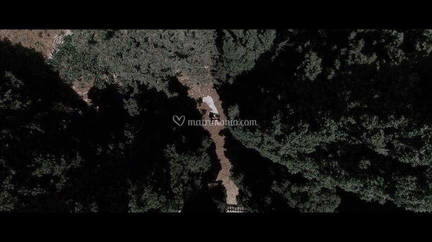 Frame estrapolato dal video