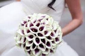 Nozze D'Ambra Wedding & Event Planner